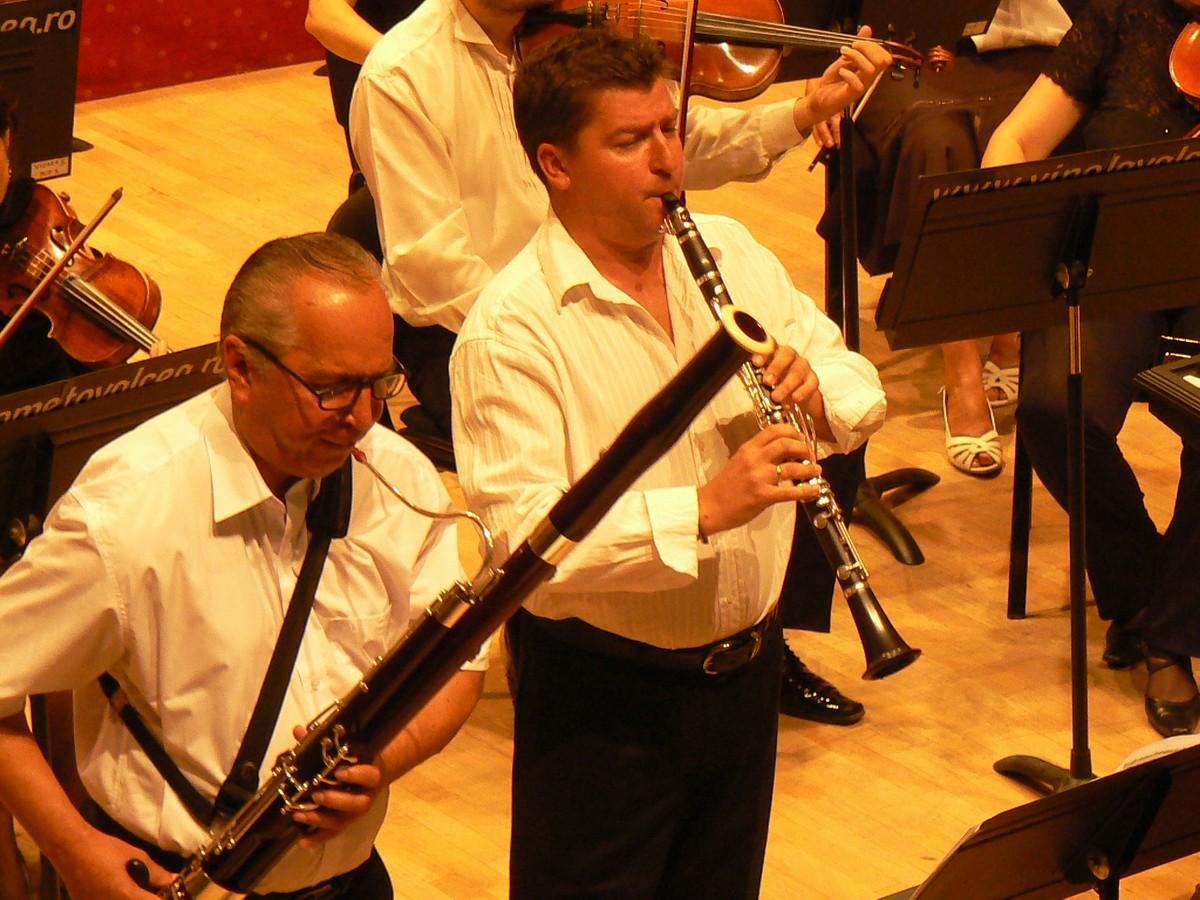 Dumitru Iosub-fagot, Mihai Ailenei-clarinet